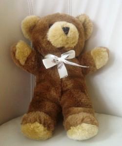 Deze Good Bear kreeg Anne van het ambulance personeel.